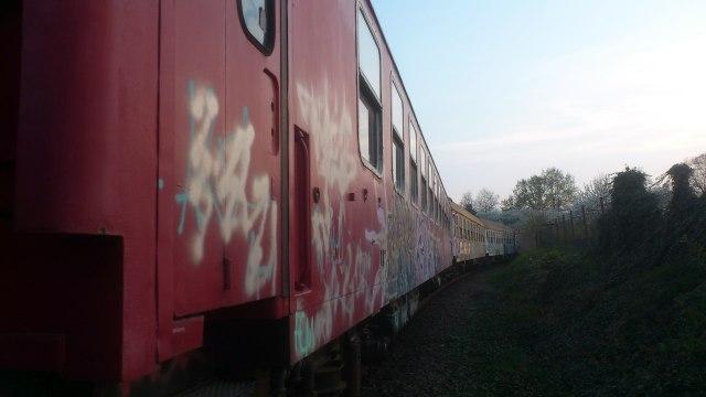 DSC_0210